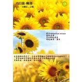 《香氛市集》向日葵精油10ml